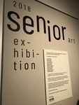 2018 Senior Art Exhibition by Augustana College, Rock Island Illinois