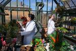 PlantBot Genetics in Rock Island